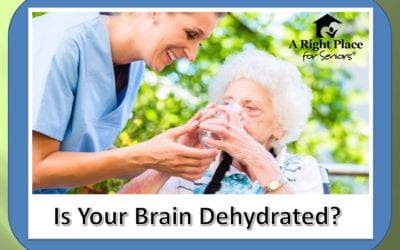 Is Your Brain Dehydrated? – How Dehydration Affects Your Brain