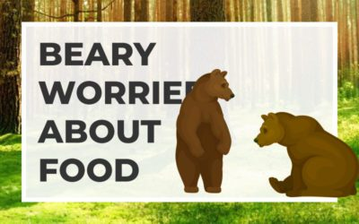 Beary Worried about Food